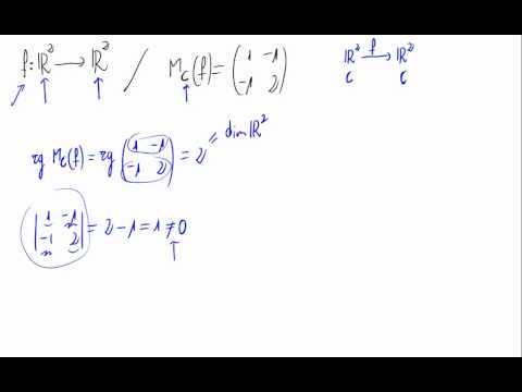 Núcleo e imagen, inyectividad y suprayectividad de una aplicación lineal