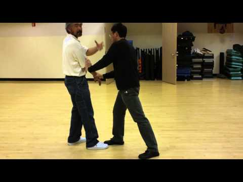 Tai Chi Push Hands Basic Training, Part 1 Image 1