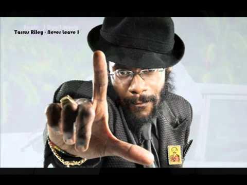 Island Vibes Riddim Mix 2011 [Chimney Records] (Brand New January 2011)