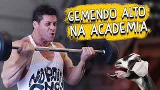 Gemendo alto na academia - DESCONFINADOS (erros no final)