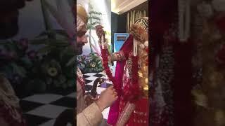 Bhangra Ta Sajda No One Gives A Damn Bhangra Ta Sajda Bhangra Ta Sajda Song Bhangra Ta Sajda L