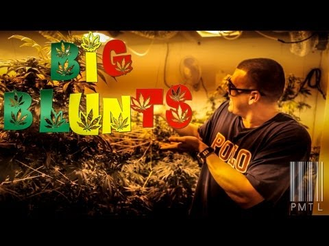 The Baby - Big Blunts [California Unsigned Artist]
