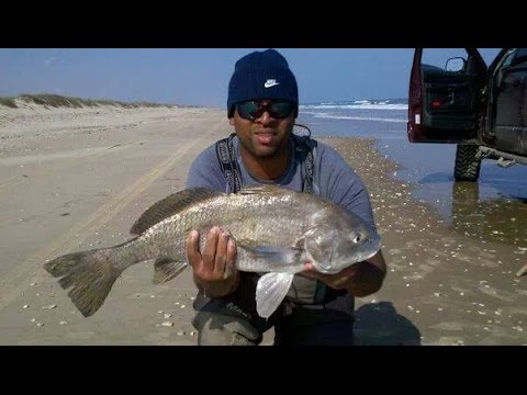 Corpus Christi Texas Surf Fishing Mark Anthony Catch 50 Inch Red Fish on Surf#1