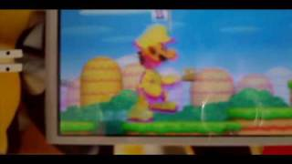 Cheat new super mario bros ds