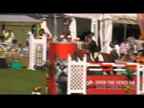 NZ Horse of the Year 2011