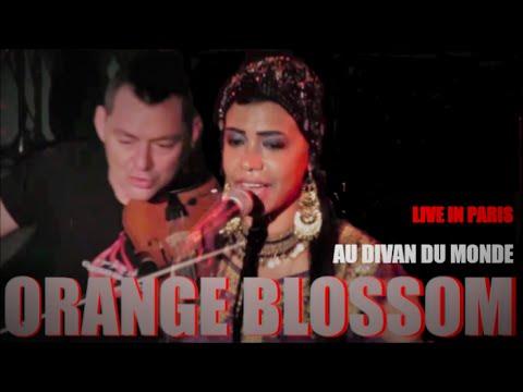 ORANGE BLOSSOM LIVE IN PARIS AU DIVAN DU MONDE PARIS LE 27 NOVEMBRE 2014