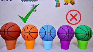 Wrong Colors Basketball Ball Learning for Toddler and Baby