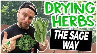 Drying Herbs (Simple Way of Preserving Food)