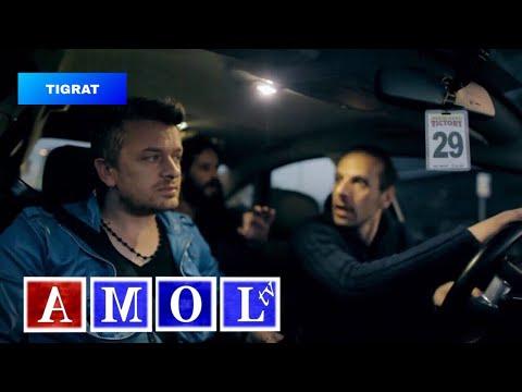 TIGRAT 2014  '' V.I.P këngëtari '' ( official video HD )