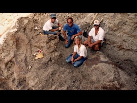 Dinosaur 13 - Amateur Paleontologist Documentary Preview