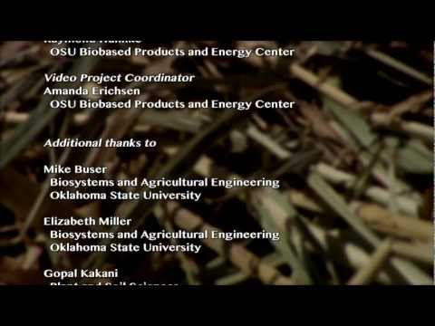 Why is cellulosic biofuels research important? Developing a Sustainable Biomass Production System