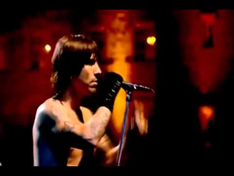 Red Hot Chili Peppers - Under the Bridge (Live Slane Castle) - Video with Lyrics/Subtitles