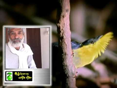 Bhoomikkoru Haritha Geetham    Malayalam Documentary video