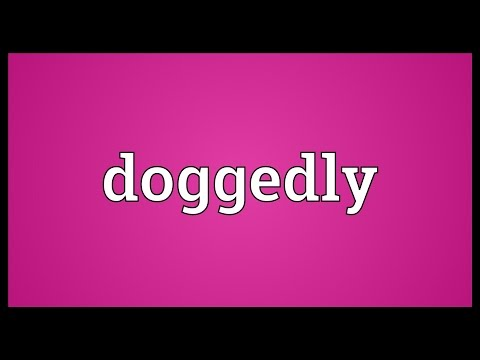 Header of doggedly