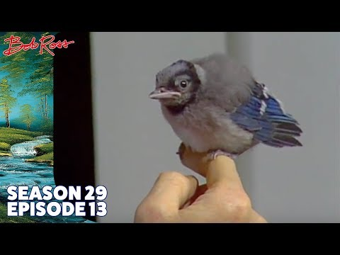 Bob Ross - Woodman's Retreat (Season 29 Episode 13)