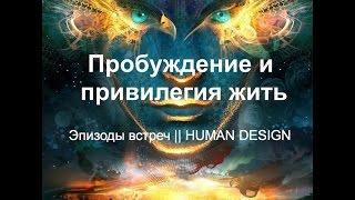 Дизайн человека даниил трофимов