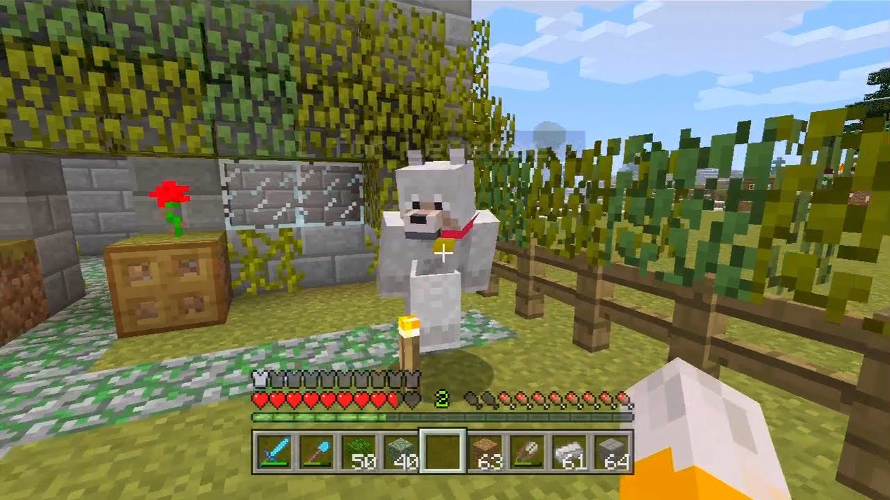 How To Build A Dog Park In Minecraft