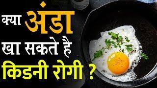 क्या अंडा खा सकते है किडनी रोगी ? | Eggs For Kidney Patients | Kidney Expert and Treatment |