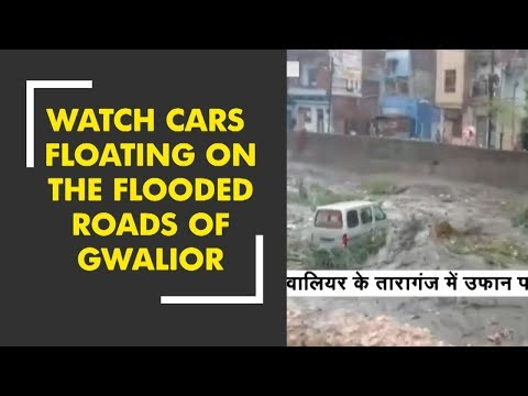 Watch cars floating on the flooded roads of MP's Gwalior