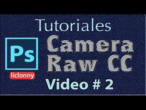 Tutorial Camera Raw CC # 2. Captura Raw, Procesamiento Raw, Formatos RAW,DNG,Tfff,jpg