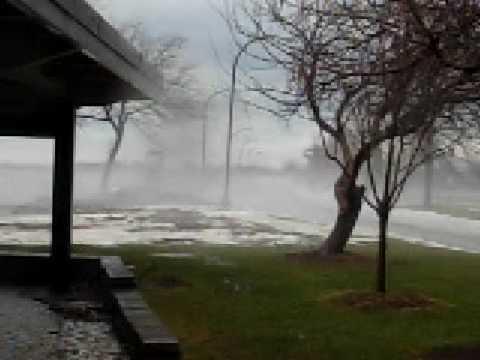 Buffalo windstrom 2008
