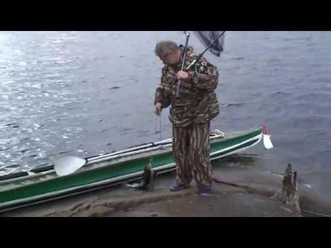 отчет о рыбалке на ковдозере