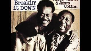Muddy Waters, Johnny Winter & James Cotton - Love Her With A Feeling.wmv