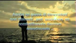 Alan Parsons - Tijuaniac