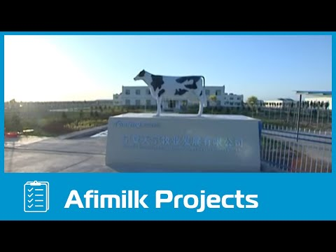 TianNing Dairy Farm in China (Afimilk)