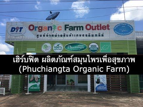 download lagu เฮิร์บฟิต ผลิตภัณฑ์สมุนไพรเพื่อสุขภาพ Phuchiangta Organic Farm gratis
