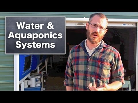 Water in Aquaponic & Hydroponic Systems