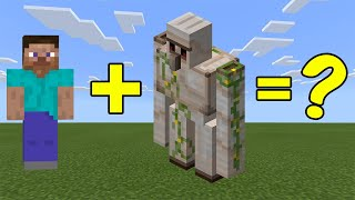 I Combined Steve and an iron Golem in Minecraft - Here's WHAT Happened...