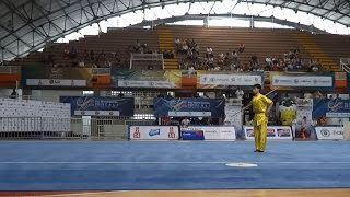 2013 World Games, Men Gunshu CHN Leiming Zhu 朱雷明 9.73