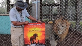 Visiting The Real Life Lion King at Central Florida Animal Reserve! | Big Cat Facts!