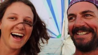 Coconuts and Spinnaker Runs - Free Range Sailing Ep 5