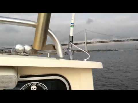 Striped bass fishing Long island sound