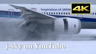 [4K] Best Collection : Plane Spotting in Snow - New Chitose Airport [CTS/RJCC] / 雪の新千歳空港