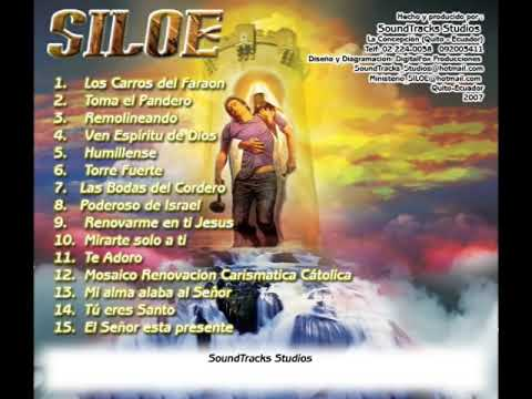 Mosaico Renovación Carismática Católica  /  Ministerio SILOE