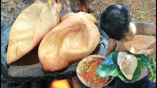 Primitive Technology - Cooking pigs ear on a rock for dinner