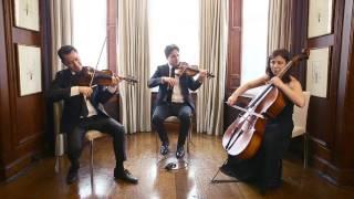 Christina Perri Thousand Years String Trio Wellington Music