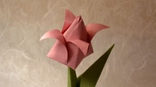 Origami Tulip Instructions: Www.origami-fun.com