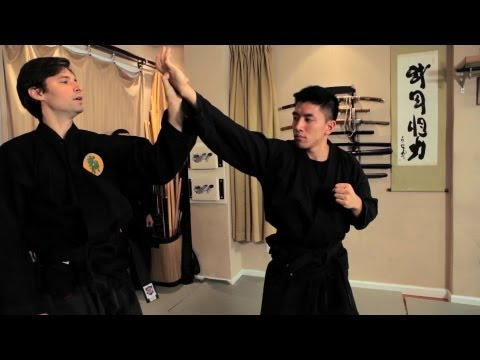 Where Can I Get the Best Ninjutsu Training? Image 1