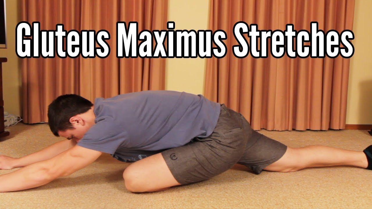 Gluteus Maximus Stretches: Glute stretching - YouTube