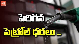 Petrol Price Increased | Petrol Price Today in India | Latest Fuel Rate |  YOYO TV Channel