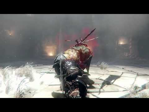 Lords Of The Fallen Champion Lord Boss Battle video