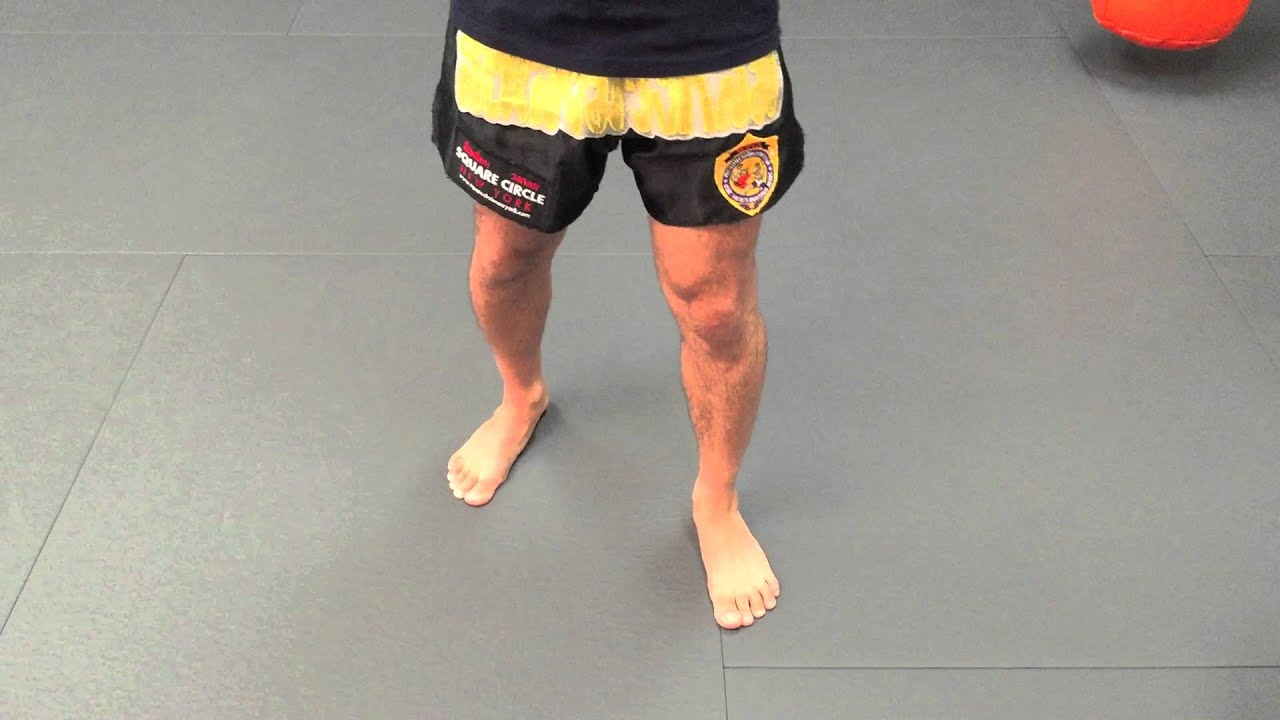Muay thai stance