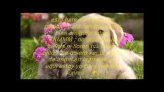 Carta De Amistad Para Una Amiga Muy Especial... ;) ♥