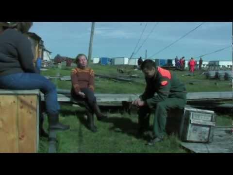 Арктика - Полярное счастье