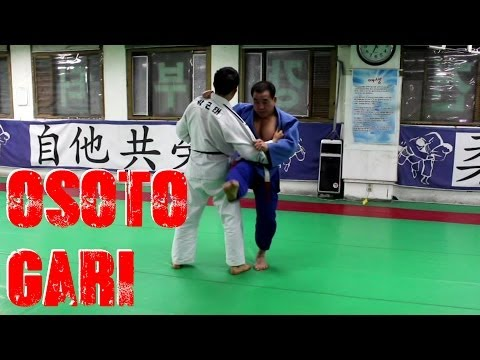 Osoto Gari by 7th Dan Korean Master (밭다리후리기) Image 1