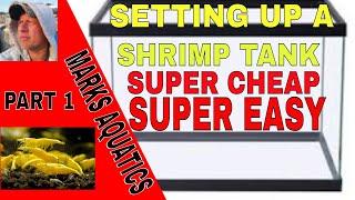 HOW TO SET UP A BUDGET SHRIMP TANK PART ONE.